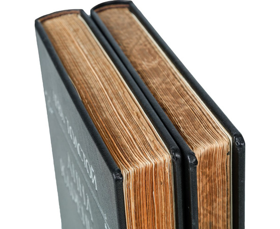 Анна Каренина. В 2 томах (комплект из 2 книг)