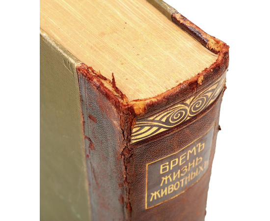 Жизнь животных в 13 томах. Тома 4-10 (полный комплект всех вышедших томов) (комплект из 7 книг)