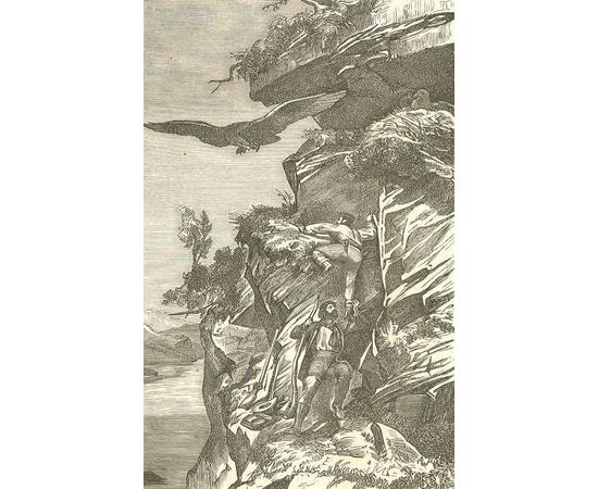 Путешествие на Север вдоль норвежского берега на Нордкап, остров Ян-Майен и Исландию, предпринятое с мая по октябрь 1861 года д-м Георгом Берна в сопровождении К.Фогта, Г.Гассельгорста, А.Грессли и А.Герцена