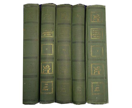 История Русской литературы XIX века в 5 томах