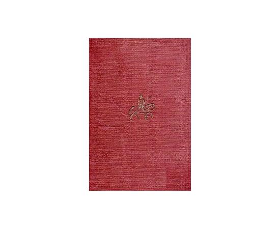 Хитроумный идальго Дон Кихот Ламанчский. В двух томах. Том 1