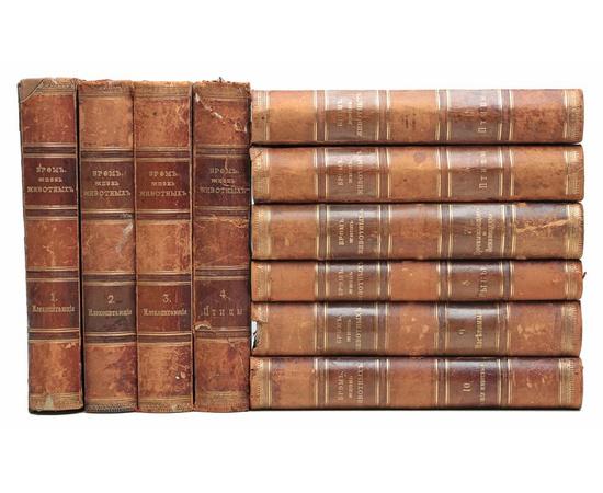 Брэм А. Э. Жизнь животных в 10 томах (комплект из 10 книг)